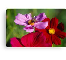To bee or not.... Canvas Print