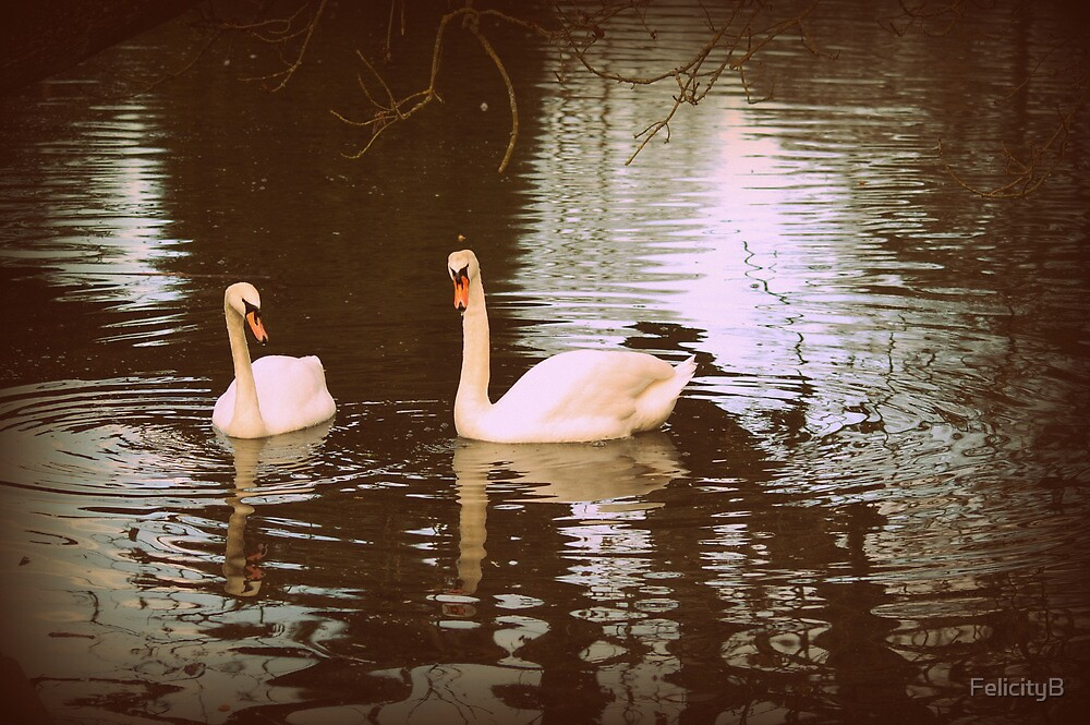 Together Forever by FelicityB
