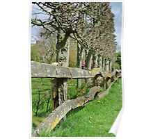 Countryside Trees Poster