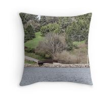 A Day at Twin Lakes Throw Pillow