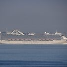 Princess- Cruise is coming in - Crucero Pricess viene by PtoVallartaMex