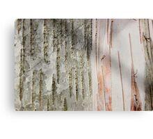 Birch Bark 11 Canvas Print