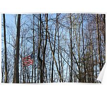 Stars Stripes and Trees Poster