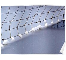 frozen fence Poster