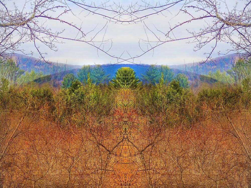 Finding Home by Lynzi Wildheart