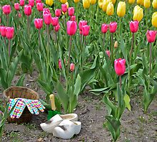 Tulip Time by Maria Dryfhout