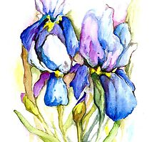 """power of flowers"" iris by Renata Lombard"