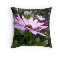 Perfect Purple Throw Pillow