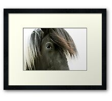 Magnificent Beauty Framed Print