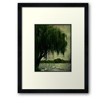 My special weeping willow tree © Framed Print