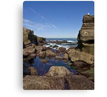 Guardians of the Ocean Canvas Print