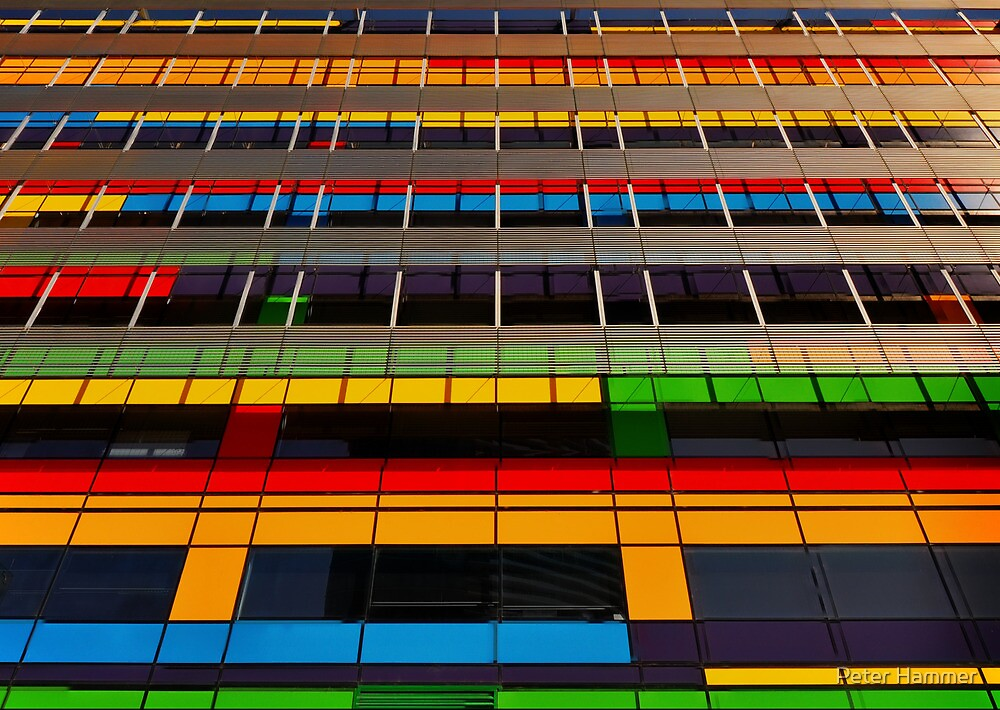Primary Colours by Peter Hammer