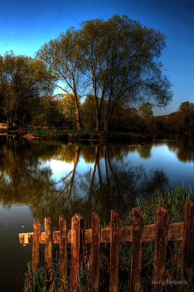 Capstone Country Park  by larry flewers