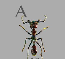 A is for Ant  by Shevaun  Shh!