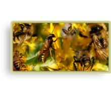 Collage of Pollinators Canvas Print