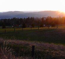 Farmland Sundown II by CormacEby