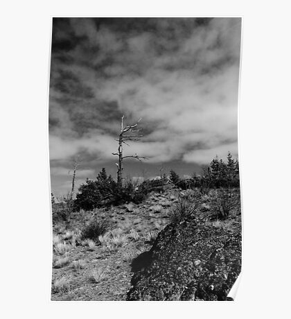 Black & White Hill Top Poster