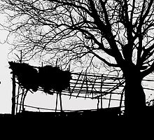 Countryside Silhouettes-1 by Mukesh Srivastava