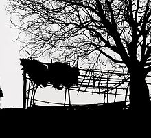 Countryside Silhouettes-2 by Mukesh Srivastava