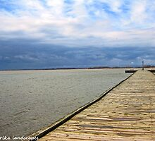 Rondeau boardwalk by Erika Price