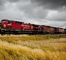 Prairie Train on the Move by CormacEby