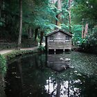 The boat house by Louise Delahunty