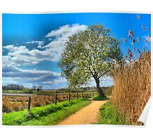 A Picture Book Countryside Scene   Poster