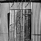 Old shed Door by Julie Sleeman