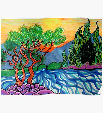 Olive and Cypress trees by the river Poster