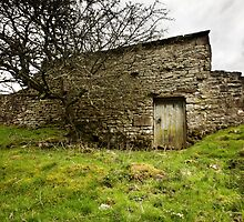 Uther's Shed by Andy Freer