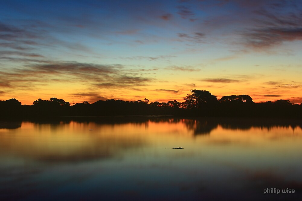 Alcomie farm dam at sunset in nor west Tasmania , Australia by phillip wise