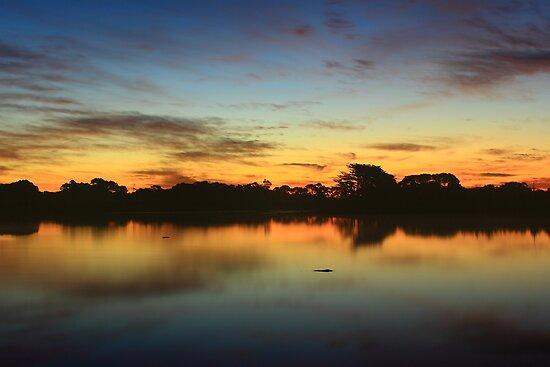 Alcomie farm dam at sunset in nor west Tasmania , Australia by phillip wise