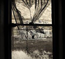 Dark Within, Light Beyond by John Conway