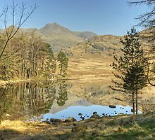 Blea Tarn...Back At The Bench. by Jamie  Green