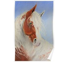 Little Red & White Gypsy Poster