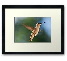 Guess Who Is Back??? Framed Print
