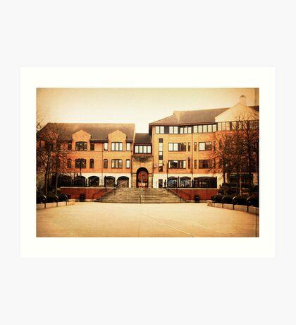Block of flats at Belfast Art Print