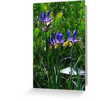 Tall Irises Greeting Card