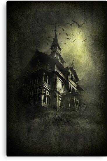 Mystery Light  by Svetlana Sewell