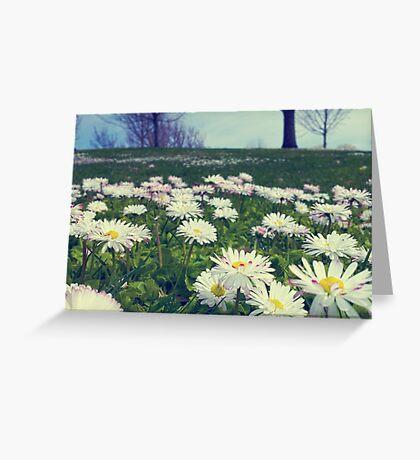 Flower Lay Greeting Card