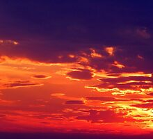 PURPLE AND RED SKY by Sandra  Aguirre