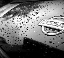 Nissan Emblem on 300zx by TigerX