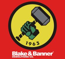 Blake & Banner Demolitions Co. (Big Logo White Text) Kids Clothes