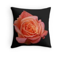 Peach Rose on Black Throw Pillow