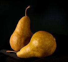 Bosc Pears by Lee LaFontaine