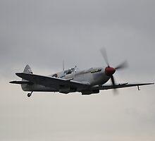 Silver Spitfire by Nigel Bangert