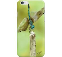 Taking a Rest iPhone Case/Skin