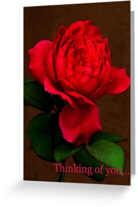 Thinking of you.... by Christine Ford