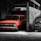EH Selective Colour: Enter at own risk by Mark Will