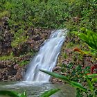 Waimea Falls, Hawaii. by Daniel Carr